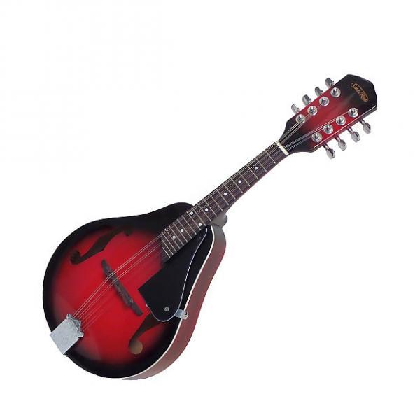 Custom Santa Rosa MAND21 Teardrop Mandolin #1 image