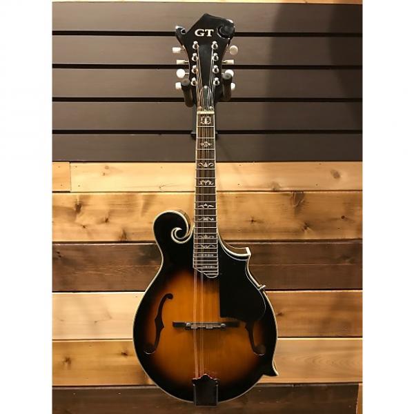 Custom Gold Tone GM-35 F Style Mandolin #1 image