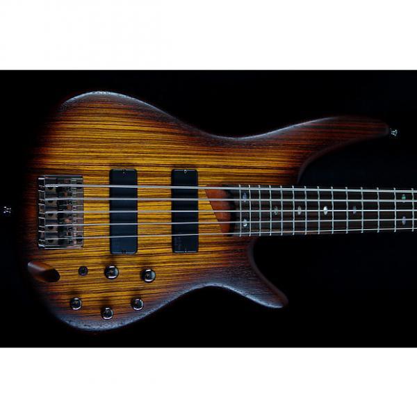 Custom Ibanez SR505ZW Soundgear Zebrawood  Zebrawood #1 image