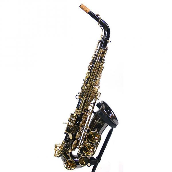 Custom JZ Horns ASB Eb Alto Sax Black & Gold Finish w/ Case #1 image