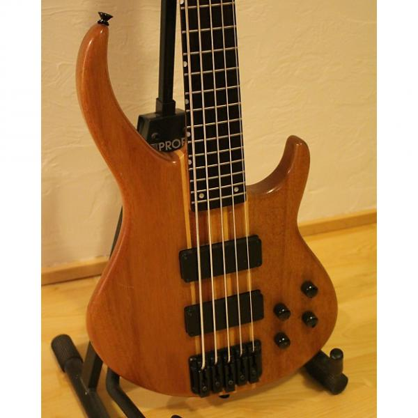 Custom Peavey Grind BXP 5 String Bass with custom Peavey Hard Case #1 image