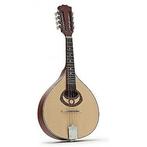 Custom Ozark Flat Back Mandolin #1 image