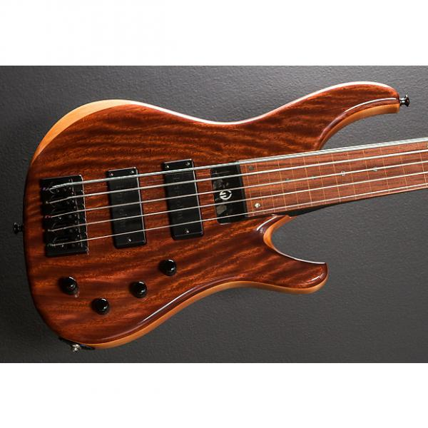 Custom G. Gould 5 String Fretless Bass Recent Natural #1 image