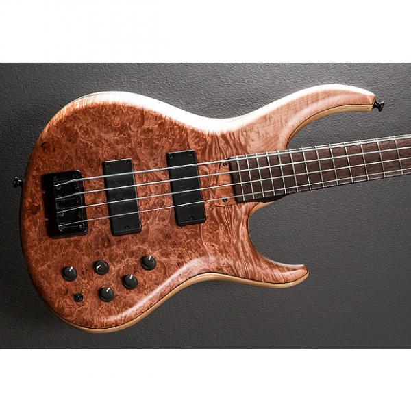 Custom MTD 434-24 Bass 2011 Natural #1 image