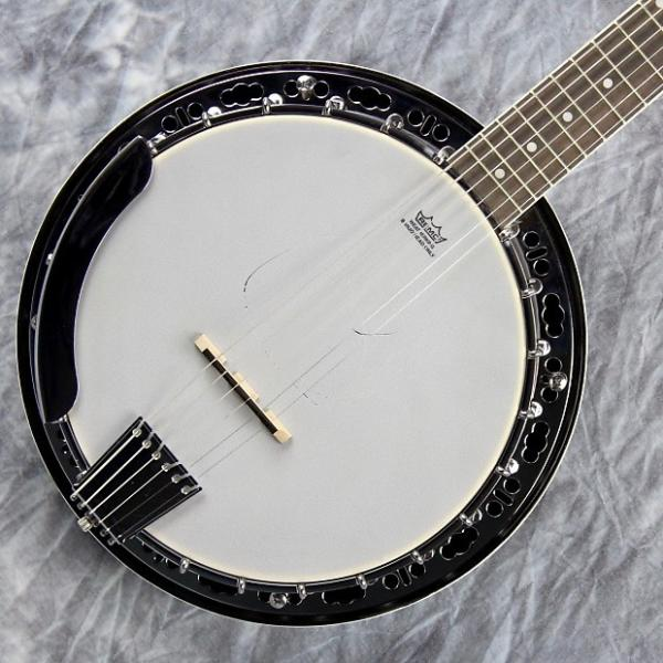 Custom Fender Rustler 6, 6-String Banjo, Banjitar, Perfect For A Guitarist #1 image