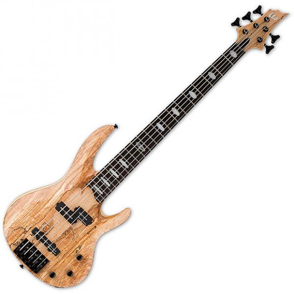 Custom ESP LTD RB-1005SM 5 String Electric Bass Natural Satin #1 image
