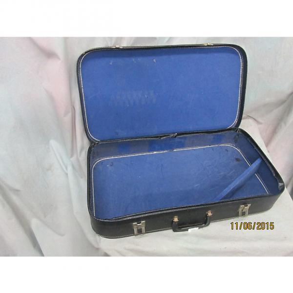 Custom 1990's Import-Autoharp case #1 image