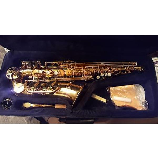 Custom Alto saxophone with case, New #1 image
