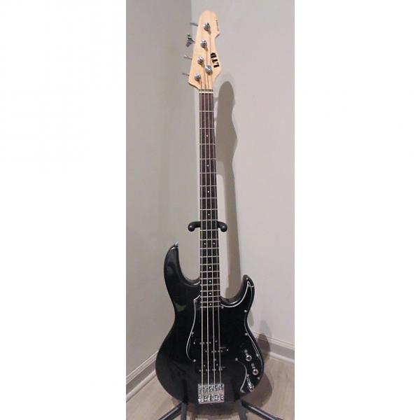 Custom ESP LTD AP-204 #1 image