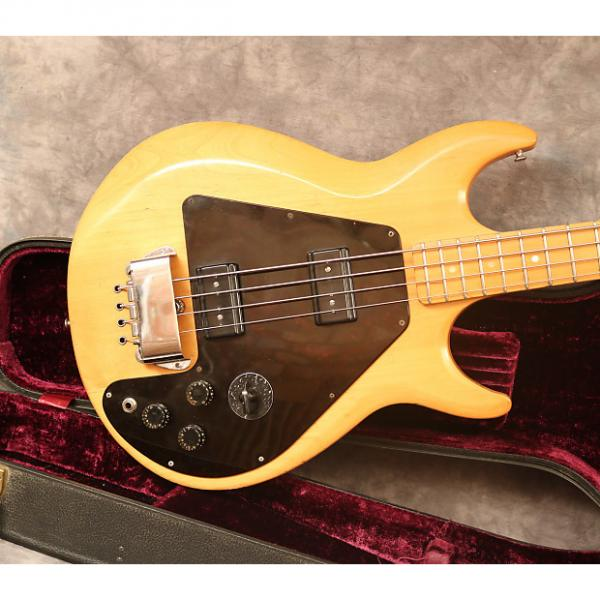 Custom 1975 Gibson Ripper Natural OHSC #1 image