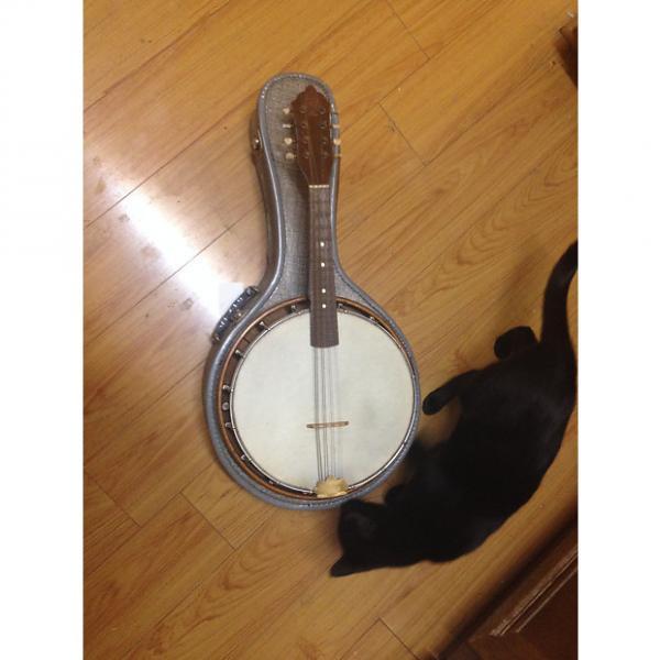 Custom Orpheum Orpheum New York Mandolin-Banjo w/ Soft Case pre 1950's? #1 image