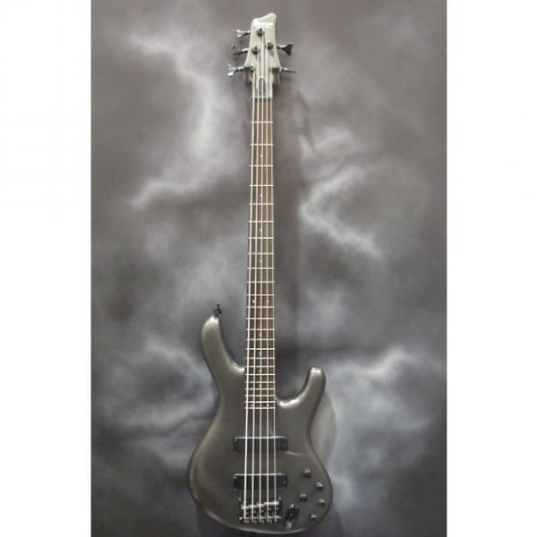 Custom Ibanez Ergodyne 5 String Bass #1 image