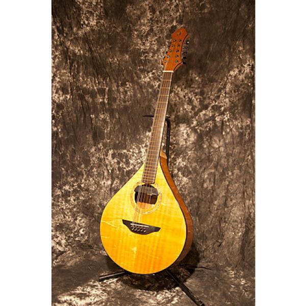 Custom Dammann Custom Instruments 5-Course Mandocello/Octave Mandolin #1 image