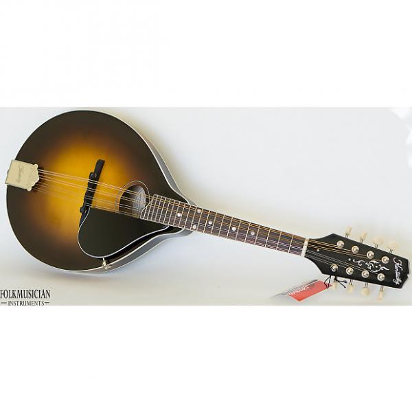 Custom Kentucky KM-270 Oval Hole Mandolin - Wooden Hardshell Case #1 image