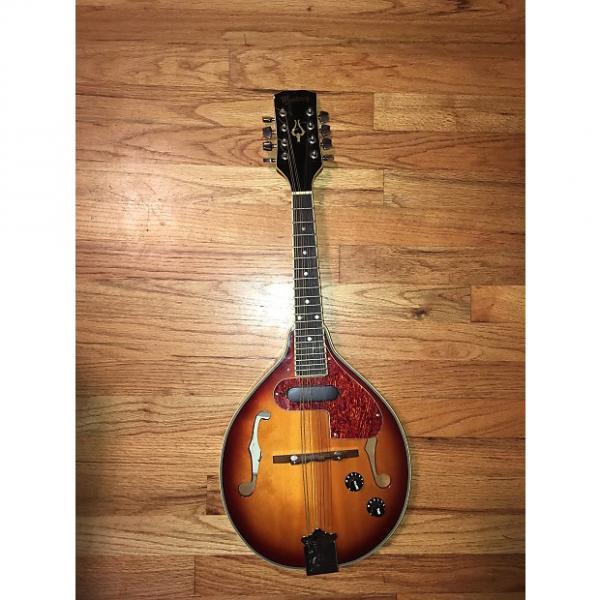 Custom Monterey Mandolin A Style 2001-ish Sunburst #1 image
