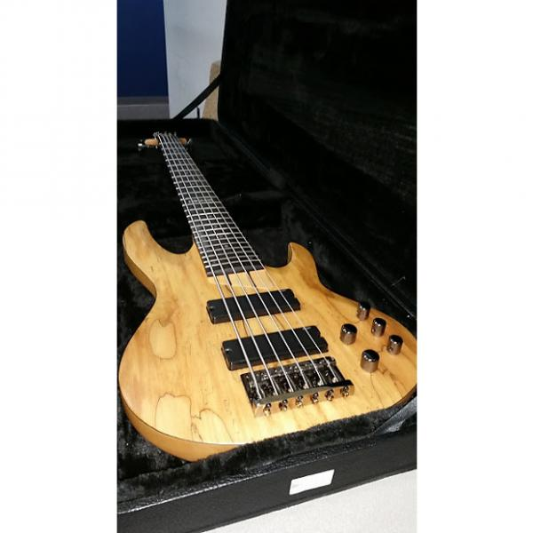 Custom ESP LTD Spalted Maple 6 String Bass #1 image
