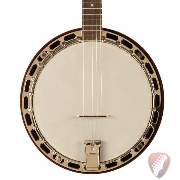 Custom Recording King RKH-05 Recording King Dirty 30s Resonator Banjo with L.R.Baggs Custom Banjo Pickup #1 image