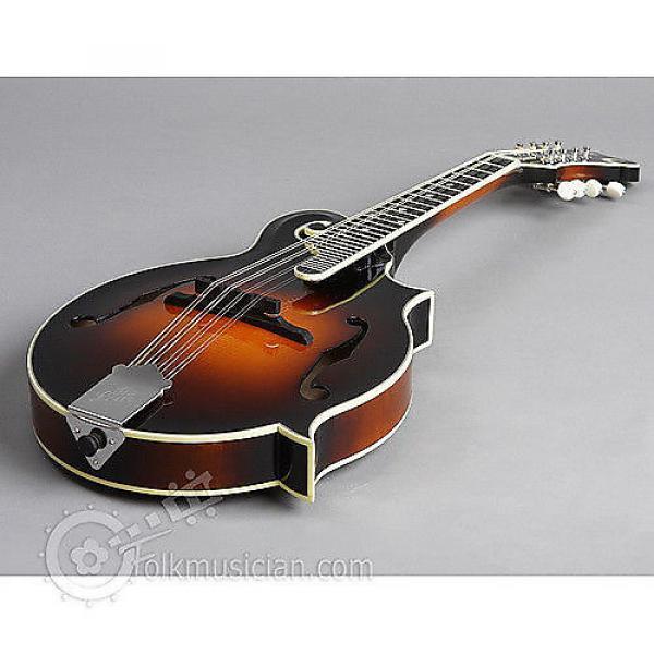 Custom The Loar LM-600-VS Mandolin - BLEM - Featherweight Case #1 image