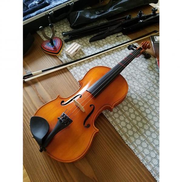 Custom Eastman Strings Samuel Eastman VL 100 Size 4/4 #1 image