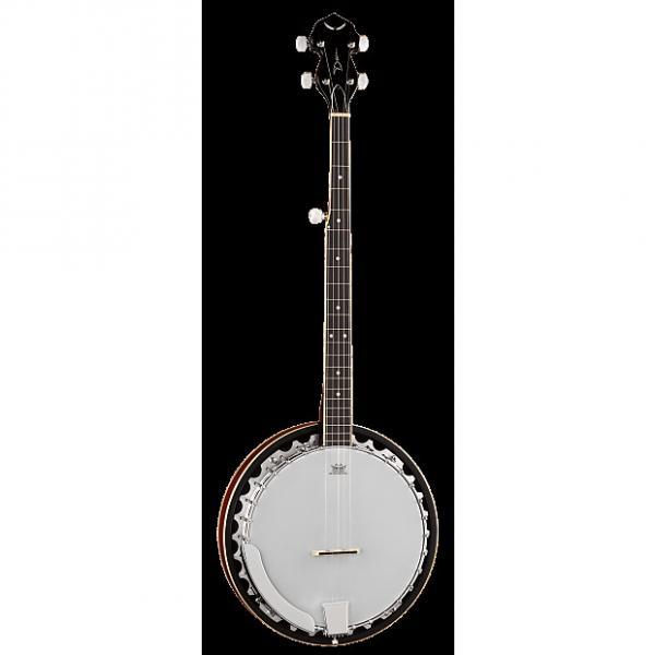 Custom DEAN Backwoods 3 5-string traditional resonator Banjo NEW #1 image