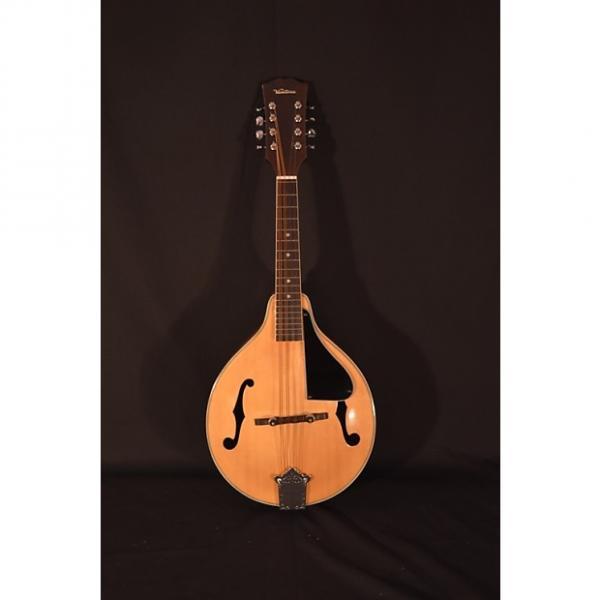 Custom Ventura Mandolin – Excellent Condition! #1 image