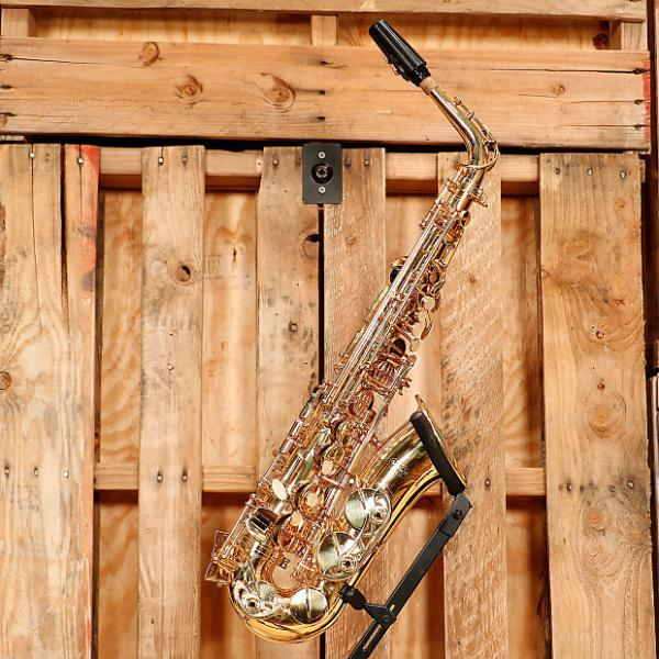 Custom Buffet Crampon Student Alto Saxophone Outfit *Rental Inventory Closeout* 2010's Brass Lacquer #1 image