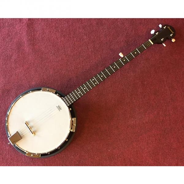 Custom Savannah SB-80 5 String Banjo Sunburst #1 image