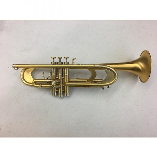 Custom Edwards Instruments Gen X Satin Gold #1 image