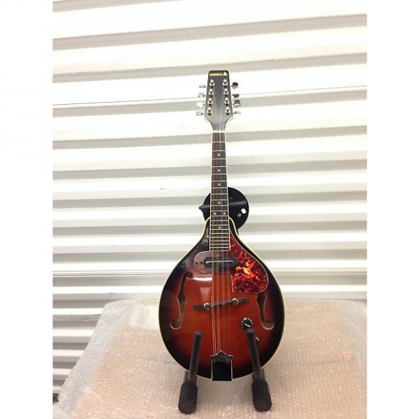 Custom SAMICK SM20E Electric/Acoustic Mandolin Early 90's #1 image