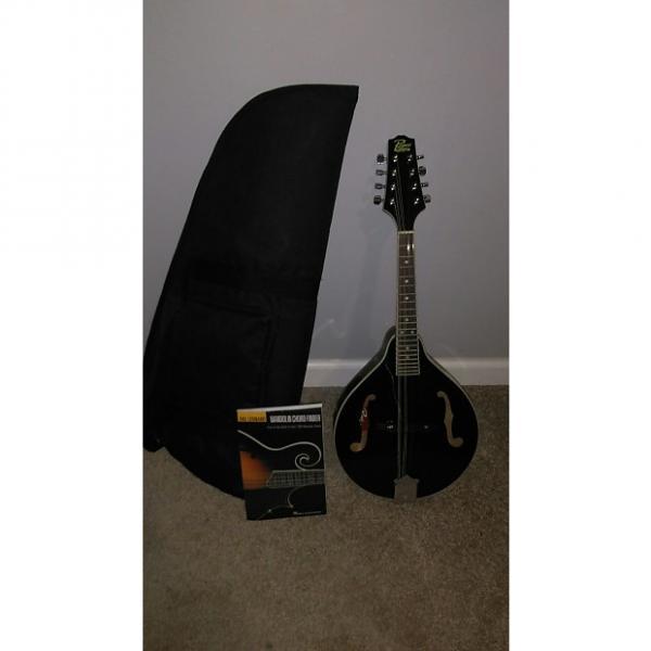 Custom Rogue  Mandolin 2007-2013 Black #1 image