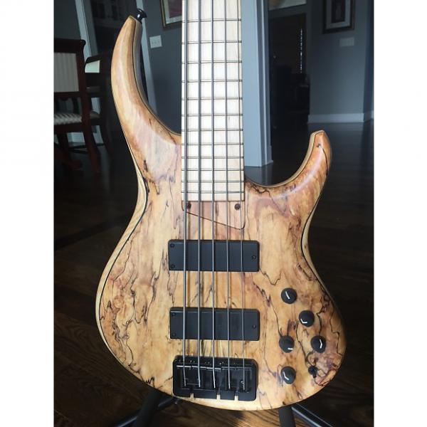 Custom MTD 535-24 5 String Bass #1 image