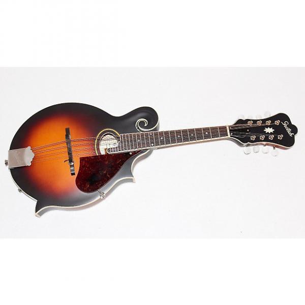 Custom Gretsch G9350 Park Avenue F O Style Acoustic-Electric Mandolin #1 image