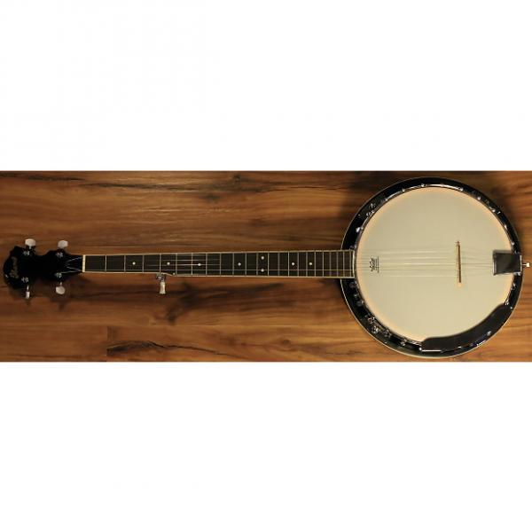 Custom Ibanez B50 5-String Banjo 2016 #1 image