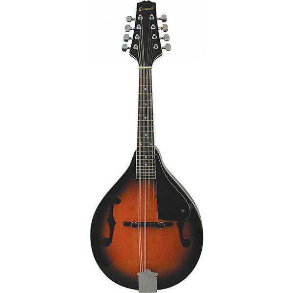 Custom Savannah SA-100 A-Model Mandolin - Sunburst #1 image