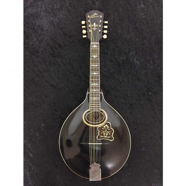 Custom Gibson A4 Mandolin - 1906 #1 image