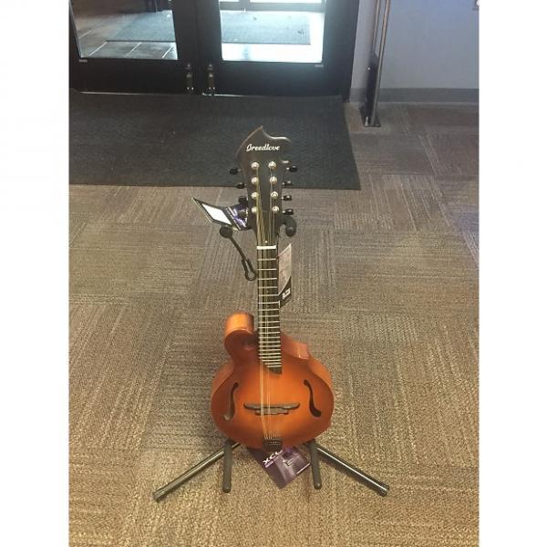 Custom Breedlove  Premier FF Mandolin W/Case #1 image