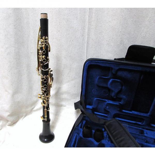 Custom Backun BACKUN Bb  Grenadilla Wood Gold Keys #1 image
