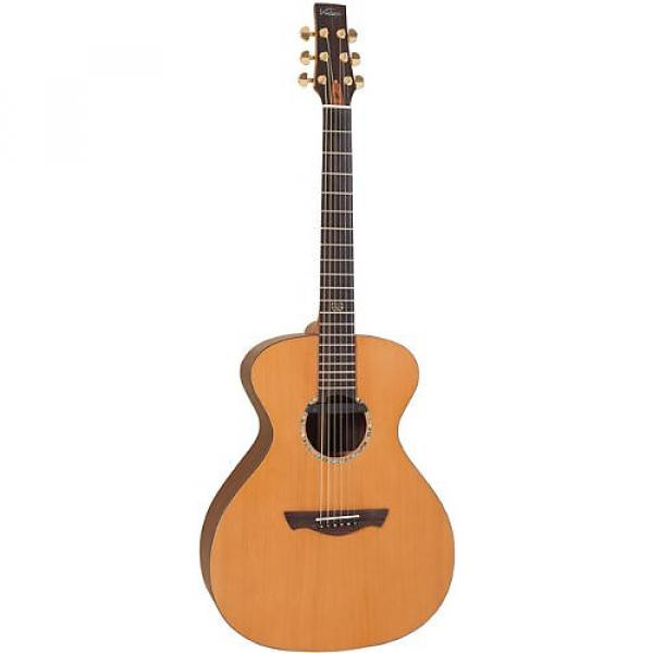 Custom Vintage VE2000DLX Gordon Giltrap Deluxe Signature Guitar And Case #1 image