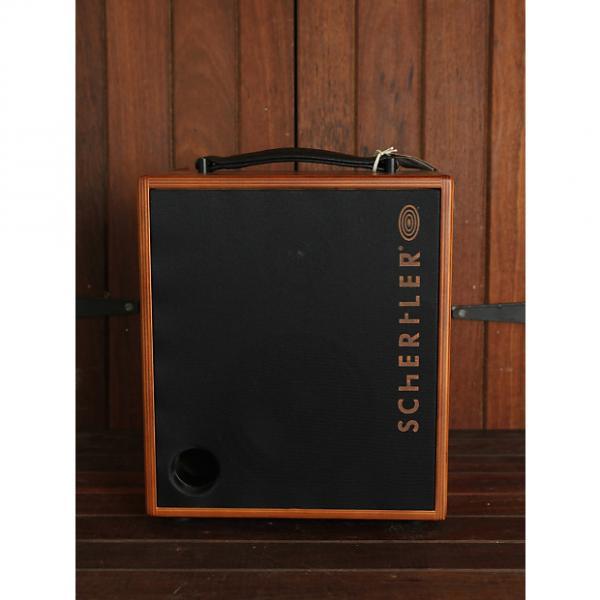 Custom Schertler David 100w Acoustic Combo NEW MODEL #1 image