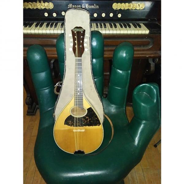 Custom Vintage Antique (late 1910's / early 1920's) Washington Mandolin + Original Canvas & Leather Case #1 image