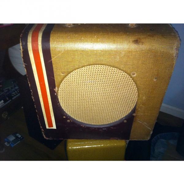 Custom Danelectro Stripe 1959 Tweed #1 image