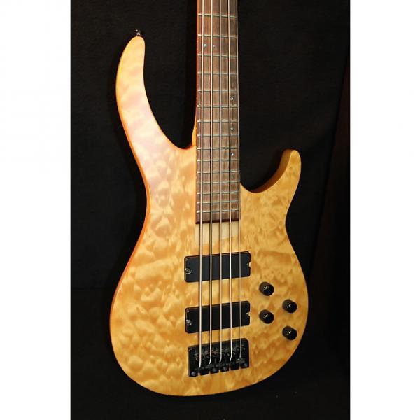 Custom Rogue LX 405 5-String Bass #1 image