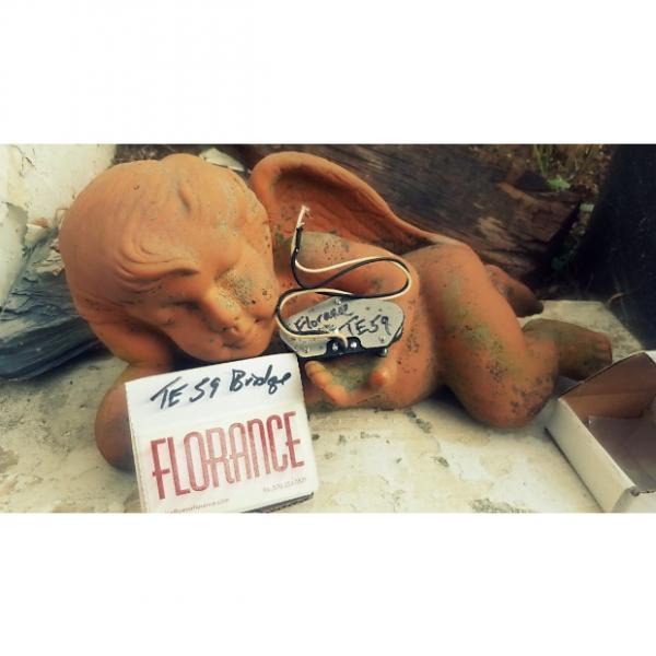 Custom peter florance voodoo TE59 tele bridge pickup #1 image