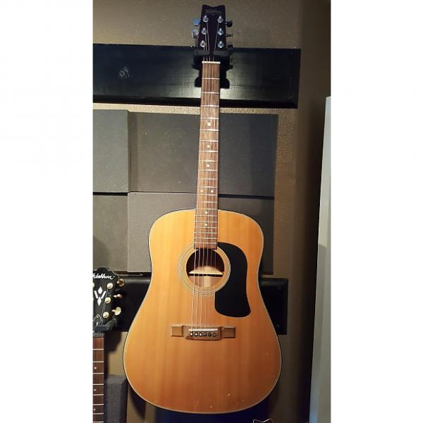 Custom Washburn D12N Acoustic Electric Guitar #1 image