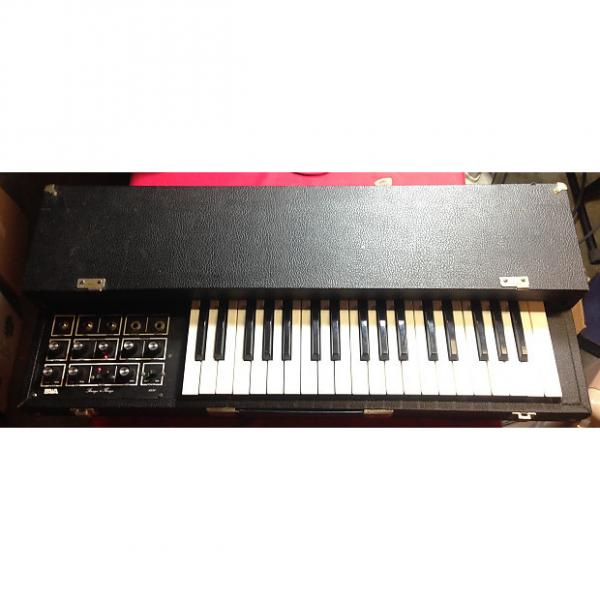Custom Paia Strings N Thingz Analog String Synthesizer Synth #1 image