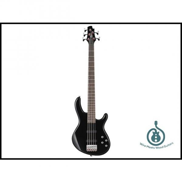Custom Cort Action Bass Plus 5-String, JJ Pickup Set, 2-Band Eq, Lightweight, Black, Free Shipping #1 image