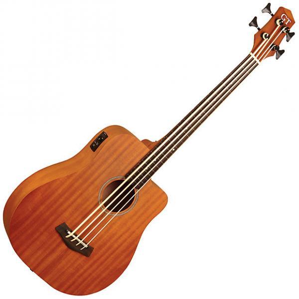 Custom Gold Tone Mbass-25 FRETLESS 25-Inch Scale MicroBass Guitar w/ Gig Bag #1 image