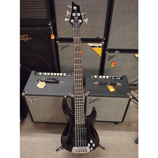 Custom TRABEN STANDARD 5 String Bass Guitar #1 image