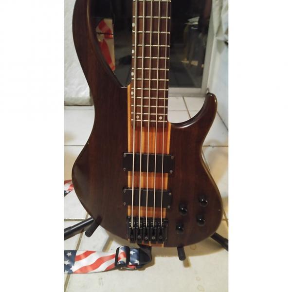 Custom Peavey Grind 5 String Bass #1 image