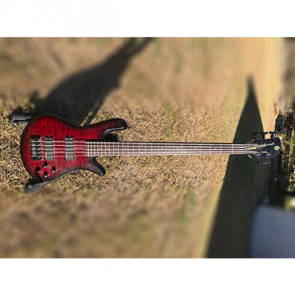 Custom Spector Legend Classic 5-string 2014 Black Cherry Gloss #1 image